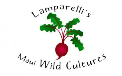 Lamparellis_LOGO sm